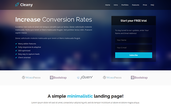 Cleany Landing Page